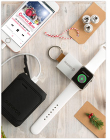 Survivor PowerBank and Travel PowerBank
